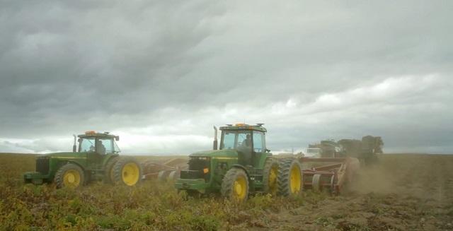 Ферма по выращиванию картофеля