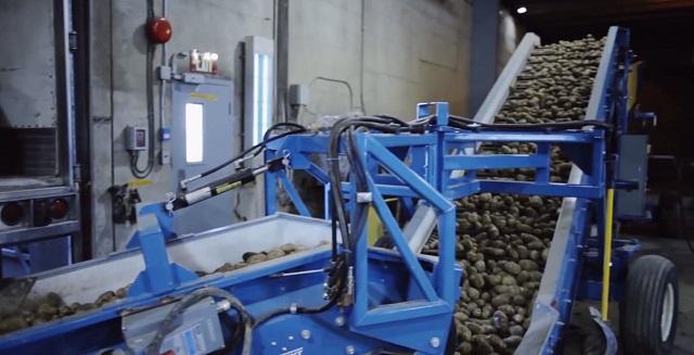 Завод по производству картофеля фри