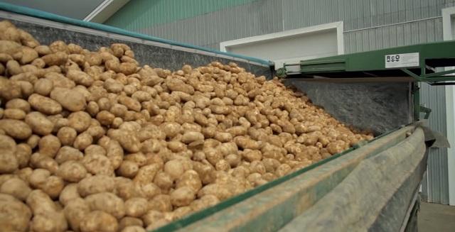 Грузовик с картофелем